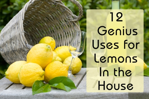 Genius usage of lemons-Uptowngirl